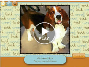 basset hound pet sitting carlsbad
