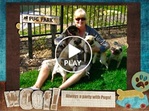 coastal-paws-pet-sitting-lincoln-oregon-smilebox